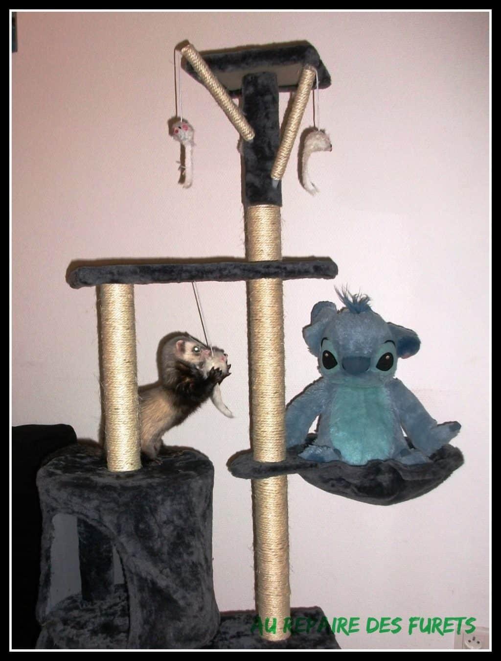 Comment Fabriquer Un Arbre À Chat arbre à chat, arbre à furets - repaire des furets