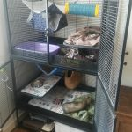 cage SAVIC ROYALE