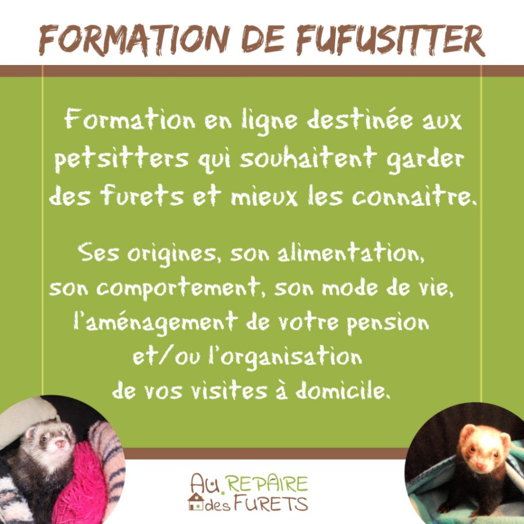 Formation FUFUSITTER