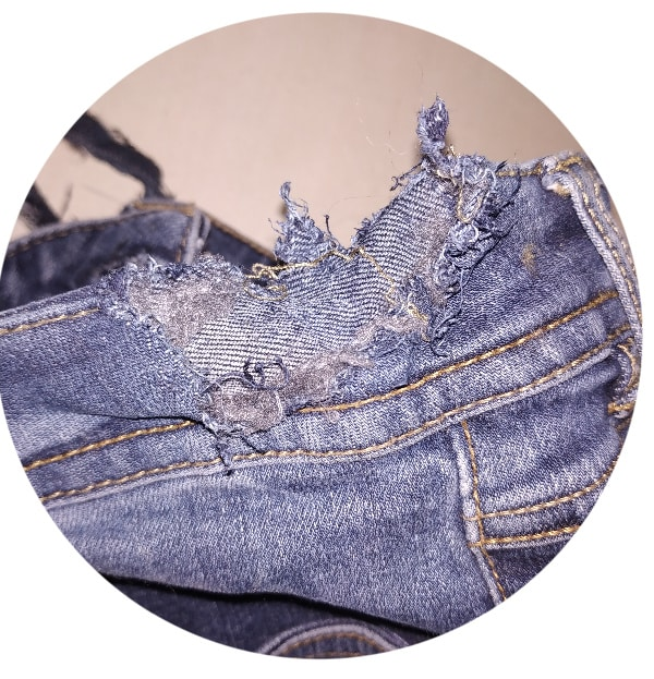 jeans mangé par un furet tissuvore