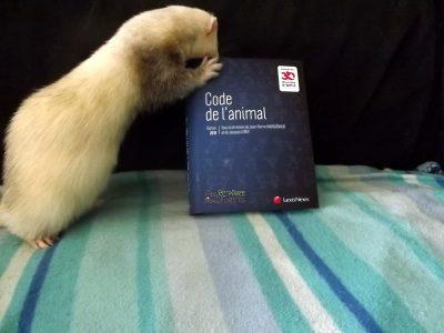 Recueil législatif sur les animaux