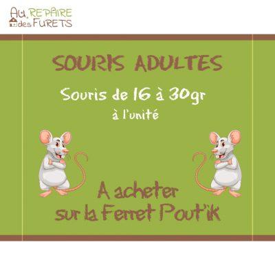 Souris adultes congelées pour furets, chats et reptiles
