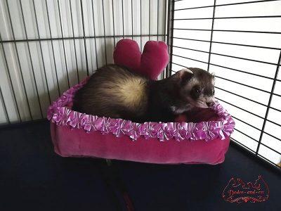 canapé pour furet avec un coeur