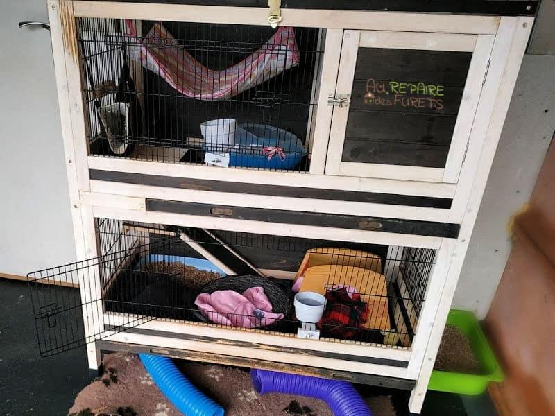 cage en bois pour furet