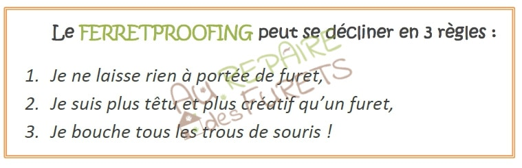 regles du ferret proofing
