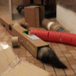 tuyau en carton pour furet